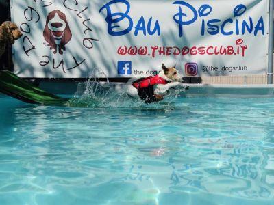 La sede - bau piscina