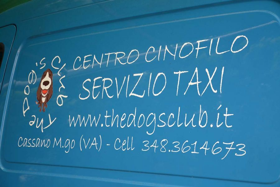 Taxi bau e Dog sitting